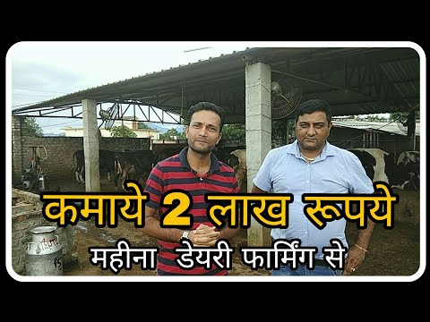 Dairy Farming . Dairy Farm ,How to start a Dairy Farming Business In India.आधुनिक पशुपालन से लखपति