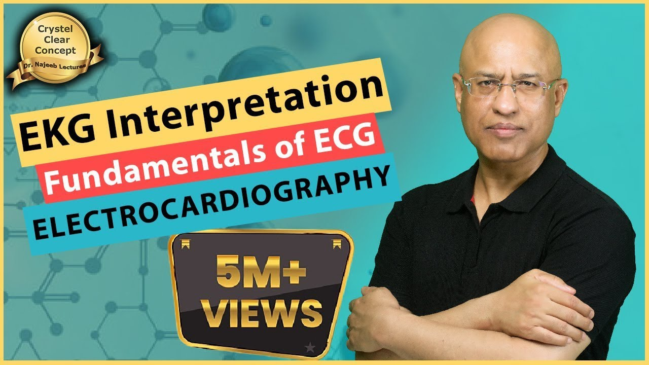 EKG Interpretation - Master Basics of ECG - Electrocardiography - Cardiology