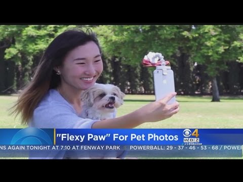 New Kickstarter To Help You Take The Perfect Pet Selfie