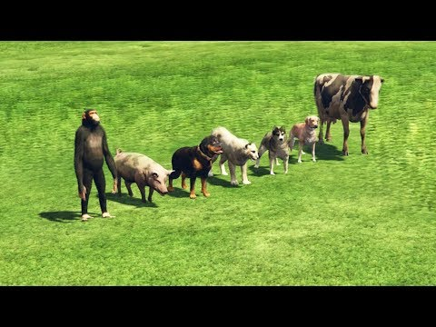 GTA 5 - Which Animal Is The Fastest?