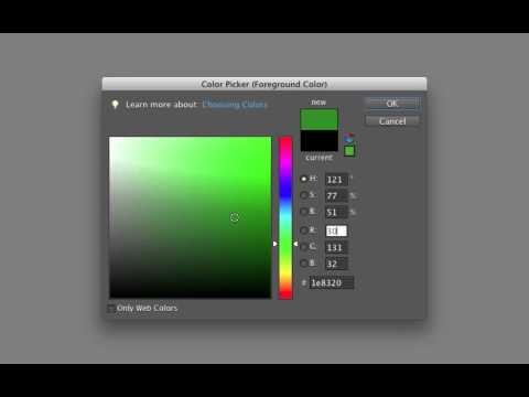 Photoshop Elements Color Picker