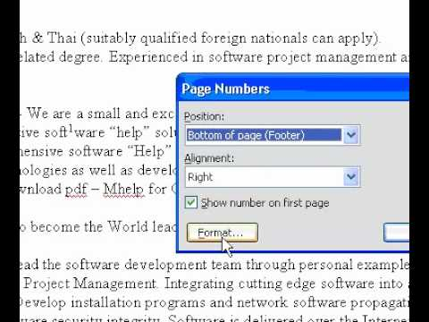 Microsoft Office Word 2003 Change the pagenumber format