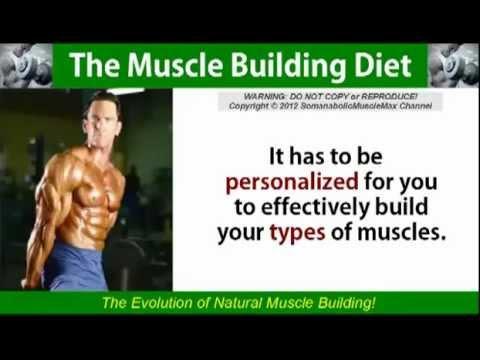 Muscle Building Diet   Diet For Men Women