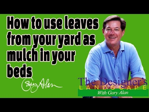 How to use Leaves from your yard as Mulch in your beds