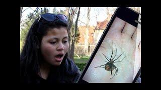 Wkręt z pająkiem MASTERSHOT - Magia Y #21