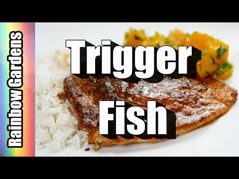 Blackened Fish (Caribbean Style) - How to Cook Trigger Fish & Remove Pin Bones