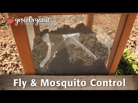 How to Get Rid of Flies and Mosquitoes