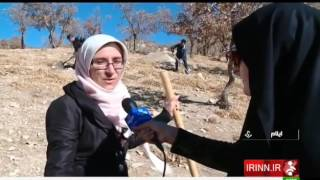 Iran Planting Trees, Ilam province كاشت درخت استان ايلام ايران