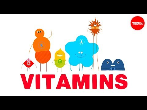 How do vitamins work? - Ginnie Trinh Nguyen