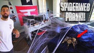 CRAZY SPIDERWEB PRANK ON FAZE APEX