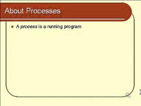 linux basics: About Processes