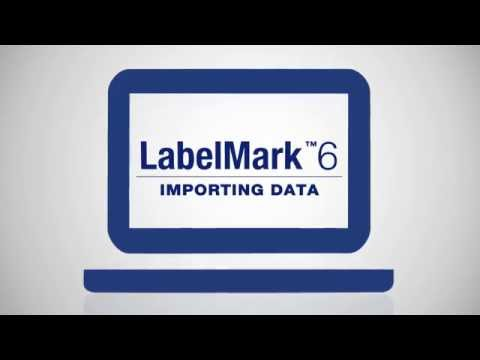 How to Import Data from Excel to LabelMark™ 6 Software