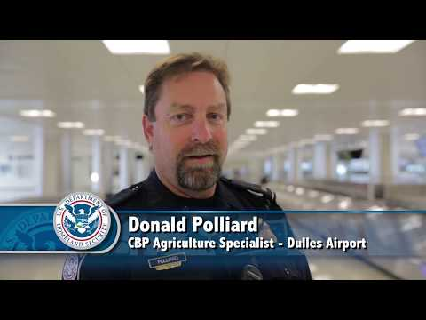 CBP Canine Enforcement Officer Don Polliard and Hair E