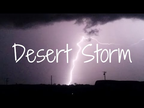 Bearded Dragon Owners // SoCal Thunderstorm (Slow Motion).