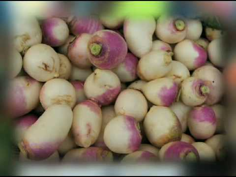 Tasty Turnips Tips from The Produce Lady