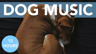 DOG MUSIC! The MOST Effective Music for Soothing Your Dogs Anxiety!