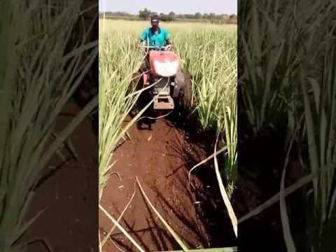Kubota Power Trailer Drive In Sugar cane
