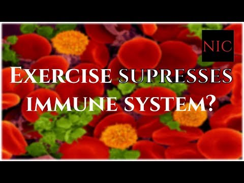 SQ: Does Exercise Suppress your Immune System?