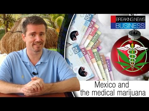 Senate approves the use of medical marijuana | Mexican Christmas bonus |  Ivy League education