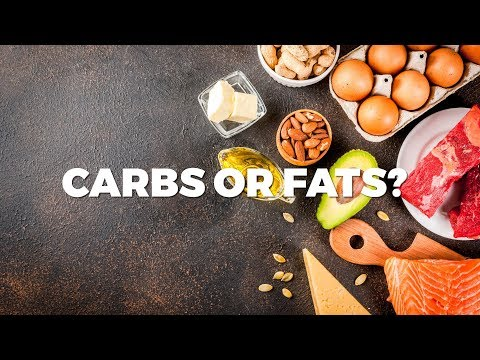Does Your Body Operate Better on Carbs or Fat?