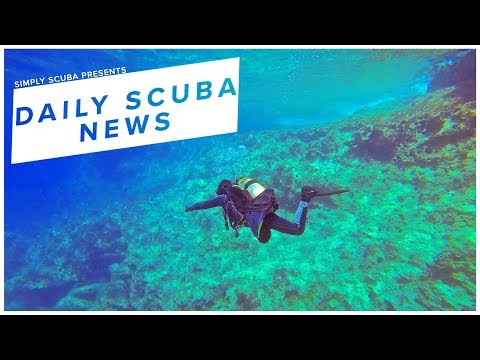 Daily Scuba News - Marine Animals Can Hear Us Scuba Dive