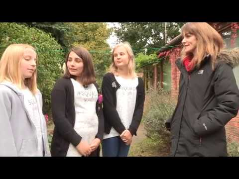 How to Help Hedgehogs with Dr Rhiannon Pursall