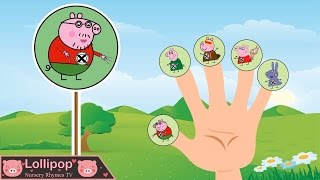Lollipop Nursery Rhymes Tv Videos Pakvim Net Hd Vdieos Portal