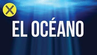 10 Datos curiosos del océano (CG#3)