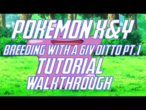 Pokemon X & Y: Breeding with a 6IV Ditto Walkthrough Pt.1