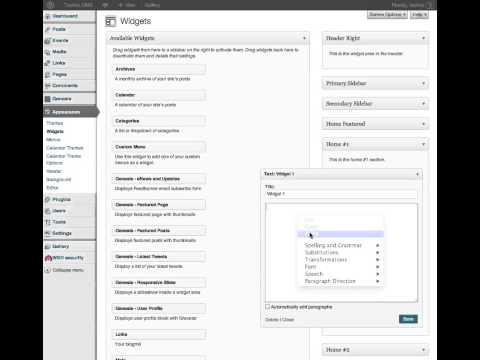Adding Text to Widgets in WordPress