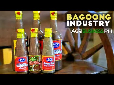 Lingayen Bagoong : Bagoong Industry in the Philippines | Agribusiness Philippines