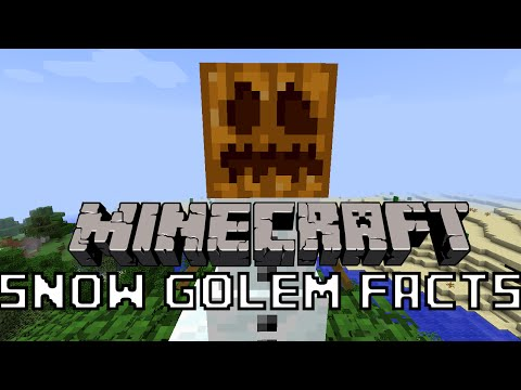 Minecraft - 10 Snow Golem (Snowman) Facts You Might Not Know