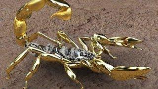 Por que el veneno de escorpion es el liquido mas caro del mundo?