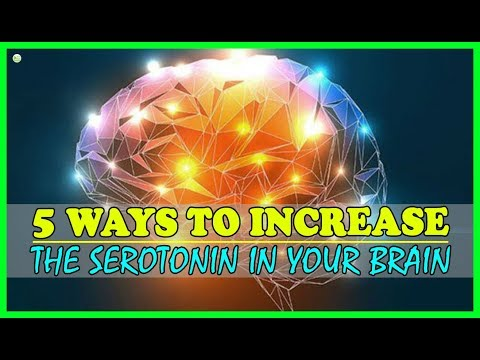 5 Ways To Increase The Serotonin In Your Brain - How To Boost Your Serotonin? | Best Home Remedies