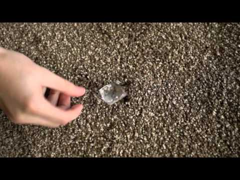 The Flooring Industry Unrolled: How To Remove Carpet Indents