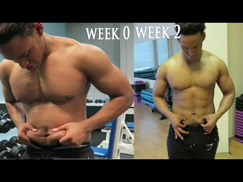How to Lose Stubborn Belly Fat in 2 Weeks | Student Shredding 2.6