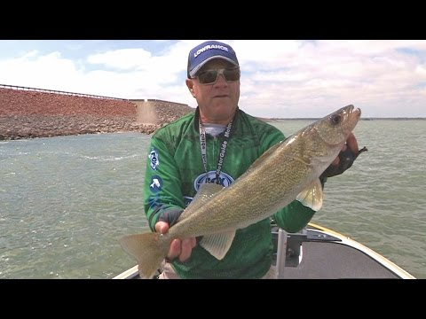 FOX Sports Outdoors PREVIEW #11 - 2017 Canton Lake, Oklahoma Walleye & Hybrid Fishing