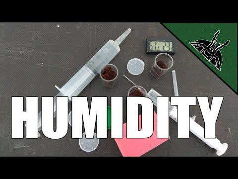 HUMIDITY and how to maintain it