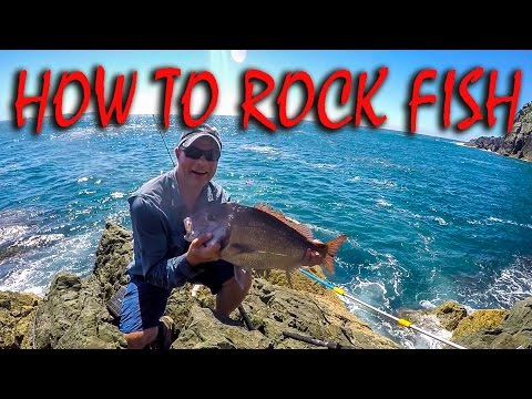 HOW TO STRAY LINE ROCK FISHING FOR SNAPPER, KAHAWAI & TREVALLY IN NZ