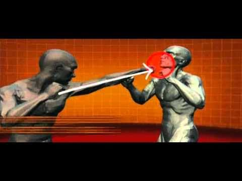 Master Moves of Savate (French Kick Boxing) : Human Weapon