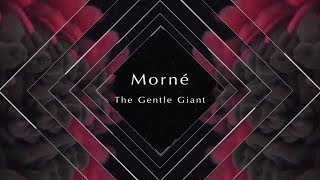 Morne Morkel | The Gentle Giant