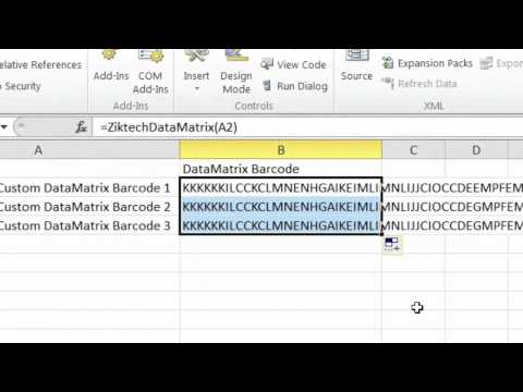 How to use Ziktech DataMatrix Barcode Font Solution in MS Word