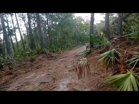 Summer Hike In Florida July 2017