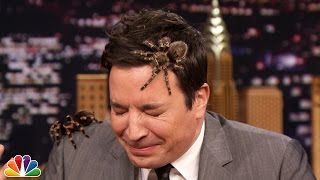 Animal expert Jeff Musial trots out a Siberian lynx, a red kangaroo and a couple of Mexican white and red-kneed tarantulas.  Subscribe NOW to The Tonight Show Starring Jimmy Fallon: http://bit.ly/1nwT1aN  Watch The Tonight Show Starring Jimmy Fallon Weeknights 11:35/10:35c Get more Jimmy Fallon:  Follow Jimmy: http://Twitter.com/JimmyFallon Like Jimmy: https://Facebook.com/JimmyFallon  Get more The Tonight Show Starring Jimmy Fallon:  Follow The Tonight Show: http://Twitter.com/FallonTonight Like The Tonight Show: https://Facebook.com/FallonTonight The Tonight Show Tumblr: http://fallontonight.tumblr.com/  Get more NBC:  NBC YouTube: http://bit.ly/1dM1qBH Like NBC: http://Facebook.com/NBC Follow NBC: http://Twitter.com/NBC NBC Tumblr: http://nbctv.tumblr.com/ NBC Google+: https://plus.google.com/+NBC/posts  The Tonight Show Starring Jimmy Fallon features hilarious highlights from the show including: comedy sketches, music parodies, celebrity interviews, ridiculous games, and, of course, Jimmy