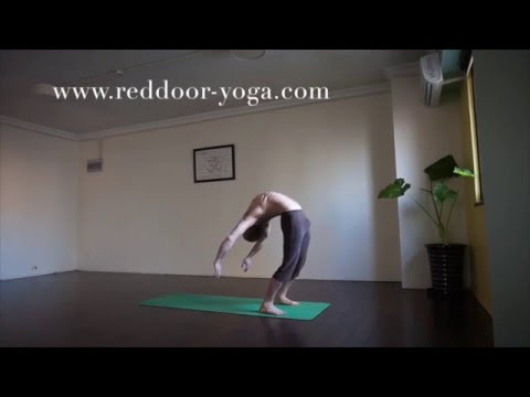Ashtanga Yoga Tips: Using the basics to improve your backbend