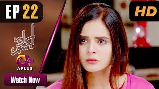 Pakistani Drama | Aik Aur Sitam - Episode 22 | Aplus Dramas | Maria Wasti, Alyy Khan, Beenish Chohan