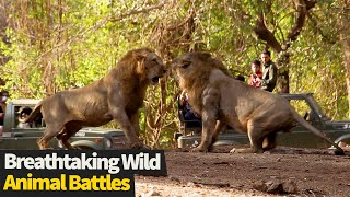 Top 17 INCREDIBLE Wild Animal Fights Caught On Cam (Animal Battles)