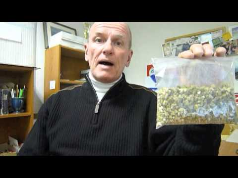 Vermiculite and Asbestos
