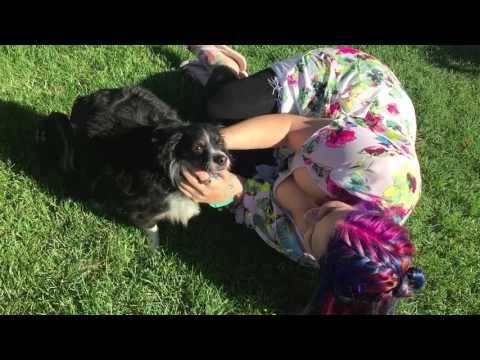 Xxx Mp4 My Little Pony Girl Rubs Dog Xx 3gp Sex