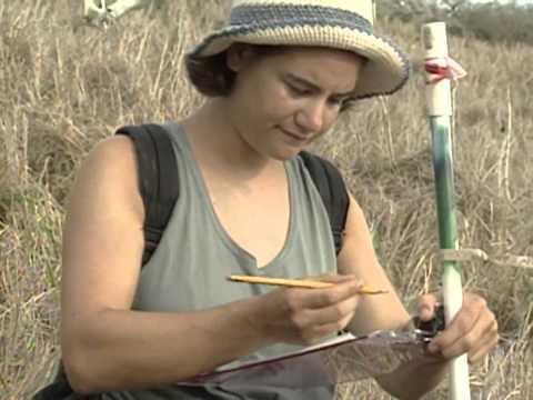 The Un-endangered Species: Wildlife & Habitat Conservation - NSSF.org